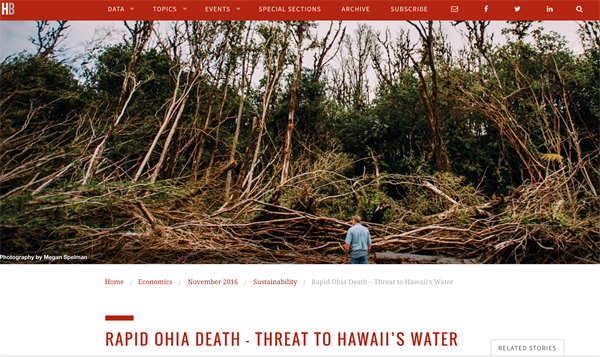Hawaiʻi Business Article Expresses How Rapid ʻŌhiʻa Death Threatens Hawaiʻi's Water