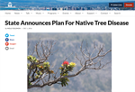 State Announces Plan for Native Tree Disease