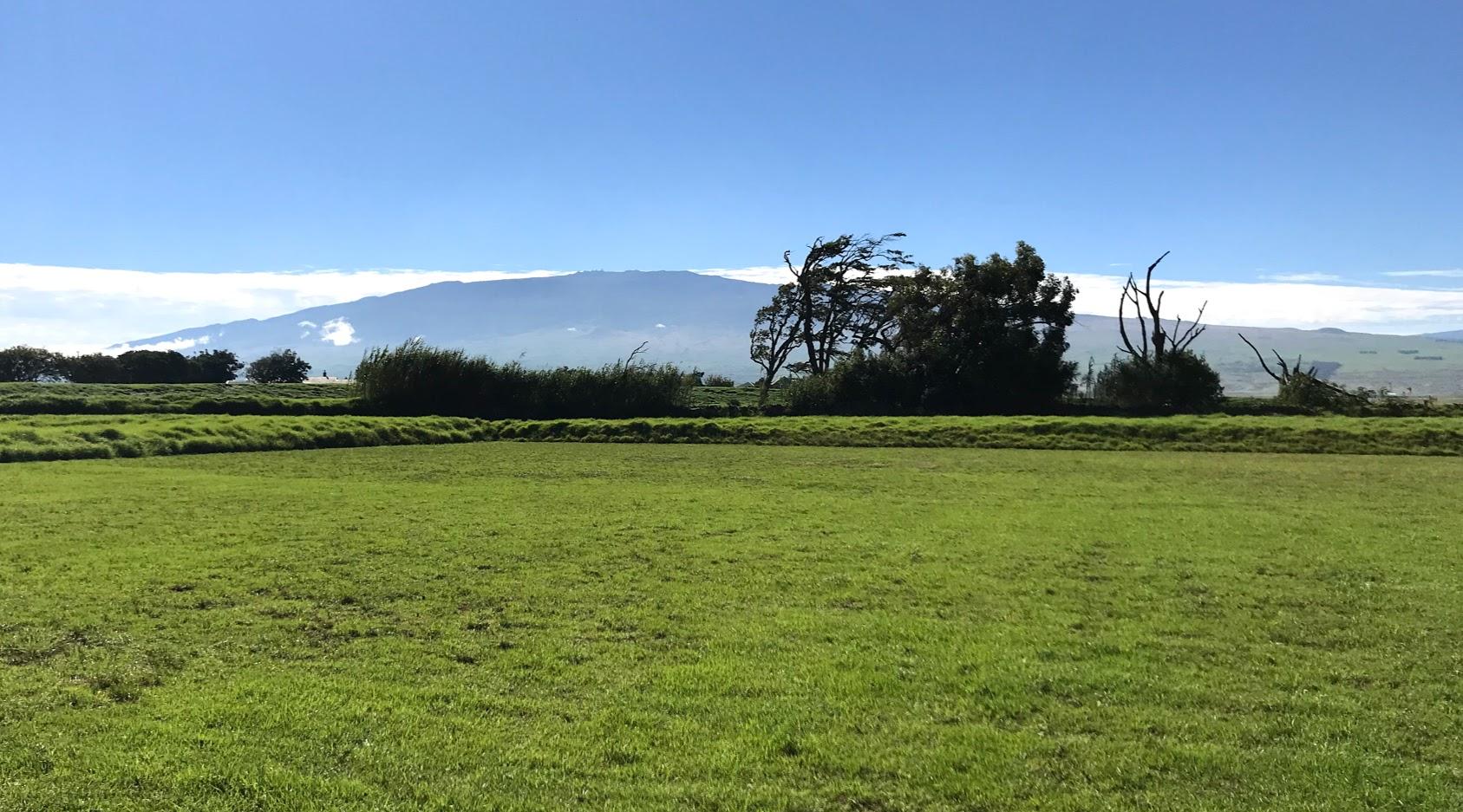 Mauna Kea viewed from Waimea