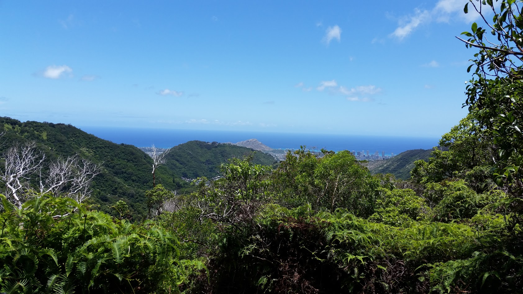 Oahu, looking towards Waikiki from Ka'au crater trail