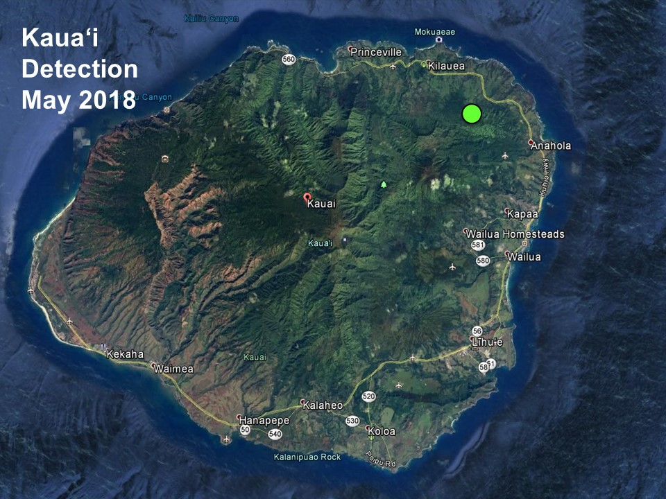Kauai detection